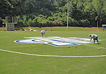 Painting Athletic Field Sports Logo